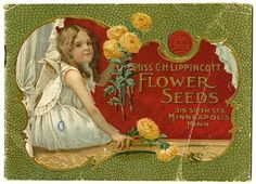 """A young girl holds New Comet asters on the cover of the Carrie Lippincott 1900 catalog.  Carrie Lippincott, the self-proclaimed """"pioneer seedswoman"""" and """"first woman in the flower seed industry"""" established her mail-order flower seed business in Minneapolis in 1891. She cultivated women customers by sending out smaller 5 inch by 7 inch catalogs with colorful covers during her early years of business."""