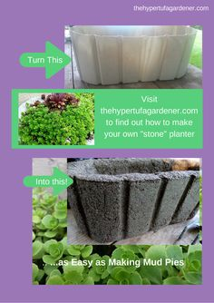 http://www.thehypertufagardener.com/check-shape/ Try making a hypertufa container, you will be hooked. Lots of info here.