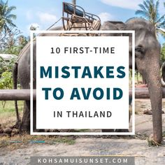 """The Top 10 Mistakes To Avoid on Your First Trip to Koh Samui, Thailand – Are you planning your first time to Koh Samui or elsewhere in Thailand? If so, borrow my """"older and wiser"""" list of top 10 mistakes to avoid."""
