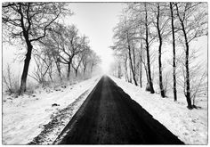 Endless Country Roads, Trees, Snow, Outdoor, Art, Outdoors, Art Background, Tree Structure, Kunst