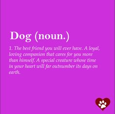There is a special place reserved in our hearts for our dogs. These 10 Dog Quotes capture the bond we share with our four-legged children.