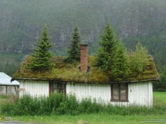 Cottage with green roof; National Geographic