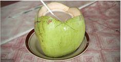 Se você beber a água de 1 coco todos os dias, é isto que vai acontecer no seu corpo a cada semana! | Cura pela Natureza