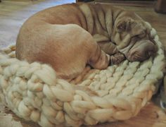 Dog Bed Chunky Dog Bed Wool Dog Bed Dog mat Large by JennysKnitCo