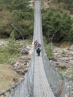 A foot and animal crossing in Nepal.  If you like treking (hiking over several days), this is some of the bridges you would cross.