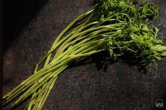 Asparagus, Vegetables, Food, Asia, Studs, Essen, Vegetable Recipes, Meals, Yemek