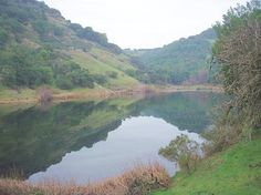 Lake Marie - Skyline Wilderness Park - nice hiking trails with views. 221 West Imola Ave Napa, CA