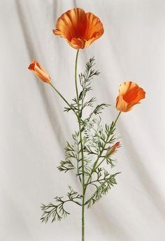 Silk Poppies California Orange Poppy Pack of 12 (Save Willow Tree Wedding, Wedding Tree Guest Book, Flower Tattoos, Small Tattoos, Hand Tattoos, Tatoos, California Poppy Tattoo, Redwood Tattoo, Evergreen Tree Tattoo