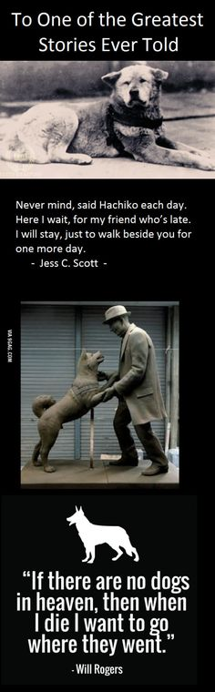 a moment of silence hachiko died on march 8 1935