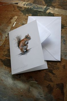 konfetti:    Christmas Card Red Squirrel Pencil Drawing by Hannah Longmuir