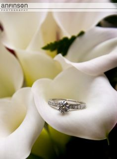Tiffany Engagement Ring | Engagement andWedding Photography by Anfinson Photography http://www.anfinsonphotography.com