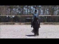 Dressage Teacher Jane Savoie Uses Leg Yielding to Help Your Horse Canter...