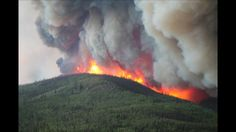 26 Best south fork fire images