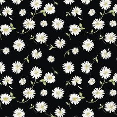 Tossed Daisies Fabric - Black - Large Print