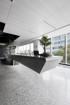 Woods Bagot were engaged by premier construction company, Multiplex, to design their offices located in Perth, Australia. Modern Office Design, Office Interior Design, Modern Kitchen Design, Office Interiors, Minimalist Architecture, Modern Architecture House, Architecture Design, Küchen Design, House Design