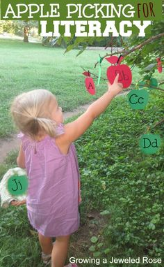 Apple picking for literacy- a fun and educational activity for kids that is easy to set up.  A great way to learn and review letters, numbers, sight words, and more!