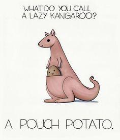 #LaughOutLoud #fun #jokeoftheday What do you call a lazy kangaroo? A POUCH POTATO! Punny Puns, Puns Jokes, Cute Puns, Jokes And Riddles, Puns Hilarious, Food Puns, Science Jokes, Lame Jokes, Animals