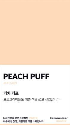 [오늘의 빛: 오늘의 색] 표준 사이에 끼어든 감성, 피치퍼프 : 네이버 블로그 Flat Color Palette, Colour Pallette, Pantone Colour Palettes, Pantone Color, Beige Pantone, Color Patterns, Color Schemes, Korean Colors, Color Studies