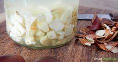 Die Rosskastanie ist ein wirksames Heilmittel gegen Rheuma, Krampfadern, Hämorrhoiden und viel mehr. So stellst du die heilende Kastanien-Tinktur her!: