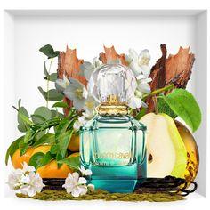 Roberto Cavalli Parfum Gem of Paradise 2018 . Perfume Diesel, Pink Perfume, Perfume Scents, Best Perfume, Perfume Bottles, Roberto Cavalli Parfum, Coco Chanel, Aloe Vera, Perfume Collection