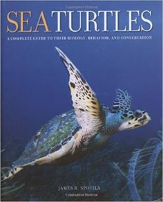 Sea turtle facts what are the differences between the five sea turtles that we can see in our local ocean leatherback world conservation union iucn status . Lets get involved in all these significant loggerhead turtle facts including loggerhead turtles diet habitat distribution and reproduction the loggerhead turtle . Learn facts about sea turtles including where they
