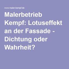 Malerbetrieb Kempf: Lotuseffekt an der Fassade - Dichtung oder Wahrheit?