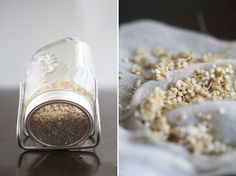How to sprout Buckwheat & Quinoa Seeds