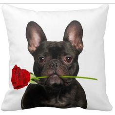 Show your love for your furry friend with this Valentine's French Bulldog Black With a Rose 16-inch Throw Pillow. Made from 100-percent polyester with 4-inch polyfill, it features a real dog image wit