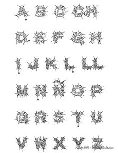 Spider letters