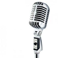 Mikrofon (Vstupní)
