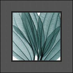 """0-028390>13x13"""" Steven N. Meyers Leaf Bouquet Framed Print"""