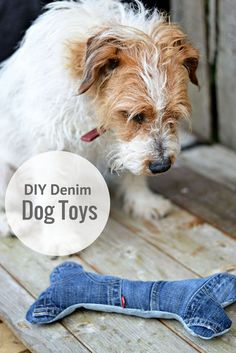 Toby with his handmade dog toy. Made from upcycled old jeans complete with squeakers for the coolest dog toys on the block. - Crafts To Love Diy Dog Toys, Best Dog Toys, Best Dogs, Cat Dog, Love Dogs, Dog Crafts, Diy Stuffed Animals, Training Your Dog, Sewing Toys