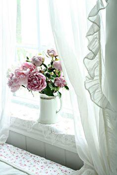 Come to my window ana-rosa: