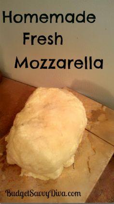 Homemade Mozzarella!