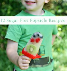 Joys of the Journey: 12 Easy and Sugar Free Homemade Popsicle Recipes