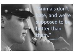 ELVIS QUOTES......OMG....LOVE THIS......\