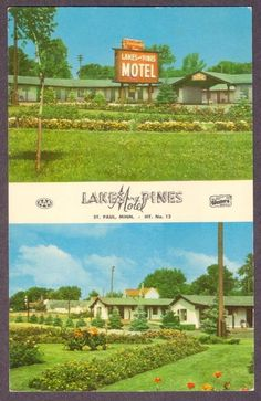 Lake & Pines Motel St. Paul, Minnesota Postcard