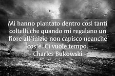Mi hanno piantato dentro così tanti coltelli che quando mi regalano un fiore all'inizio non capisco neanche cos'è. Ci vuole tempo. -Charles Bukowski -  https://www.facebook.com/Tutto-E-Niente-119771321692000/ #buongiorno #pensieri #parole #frasi #citazioni #charlesbukowski #aforismi #frasitumblr #tumblr #riflessioni #cit #photooftheday #instagood #amore #frase #quoteoftheday #me #quotes #bestoftheday #picoftheday #quote #phrase #bukowski #frasedelgiorno #frasidelgiorno #phrases…
