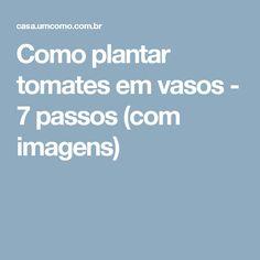 Como plantar tomates em vasos - 7 passos (com imagens)