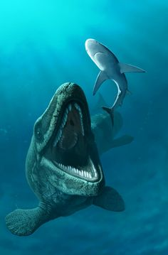 Mosasaurs inhabit the vast oceans of London. Mosasaurus hoffmani by ~Olorotitan @ deviantART http://olorotitan.deviantart.com/