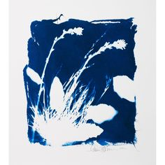 Carrie Lederer Daily Momento #1 2012 - cyanotype pigment print | The RealReal