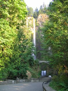 Visit Portland: Multnomah Falls, 611 ft & 30 min from the city center. Oregon Road Trip, Oregon Trail, Oregon Coast, Vacation Places, Places To Travel, Oh The Places You'll Go, Places To Visit, Multnomah Falls Oregon, Visit Portland