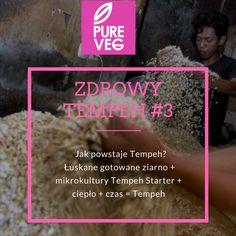 Wszystko, co chcielibyście wiedzieć o tempehu, ale nie wiecie gdzie pytać, znajdziecie tutaj>> www.tempehmake.com, a kupicie tutaj >> www.pureveg.pl #tempeh #tempehgold #tempehnaturalny #tempehwedzony #tempehlubinowy #sklepztempehem #pureveg