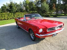 Ford Mustang convertible 289 ci - v8 automaat - 1965