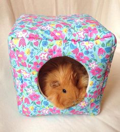 Guinea Pig Cosy Cube! Fleece cozies