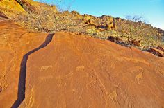 Rock drawings of Twyfelfontain (?), UNSECO World Heritage Site, Damaraland, Namibia