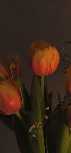 Flowery Wallpaper, Orange Wallpaper, Aesthetic Pastel Wallpaper, Aesthetic Wallpapers, Wallpaper Backgrounds, Iphone Wallpaper, Film Aesthetic, Flower Aesthetic, Aesthetic Images