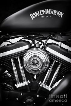 Iron 883 Photograph by Tim Gainey
