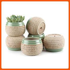 T4U 3 Inch Clay Glazed Stripe Oblate succulent Plant Pot/Cactus Plant Pot Flower Pot/Container/Planter Beige Package 1 Pack of 6 - Lets plant (*Amazon Partner-Link)