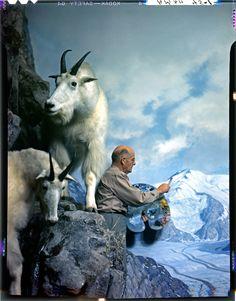 9-Mt_Goat_B_Browne.jpg (1175×1500)